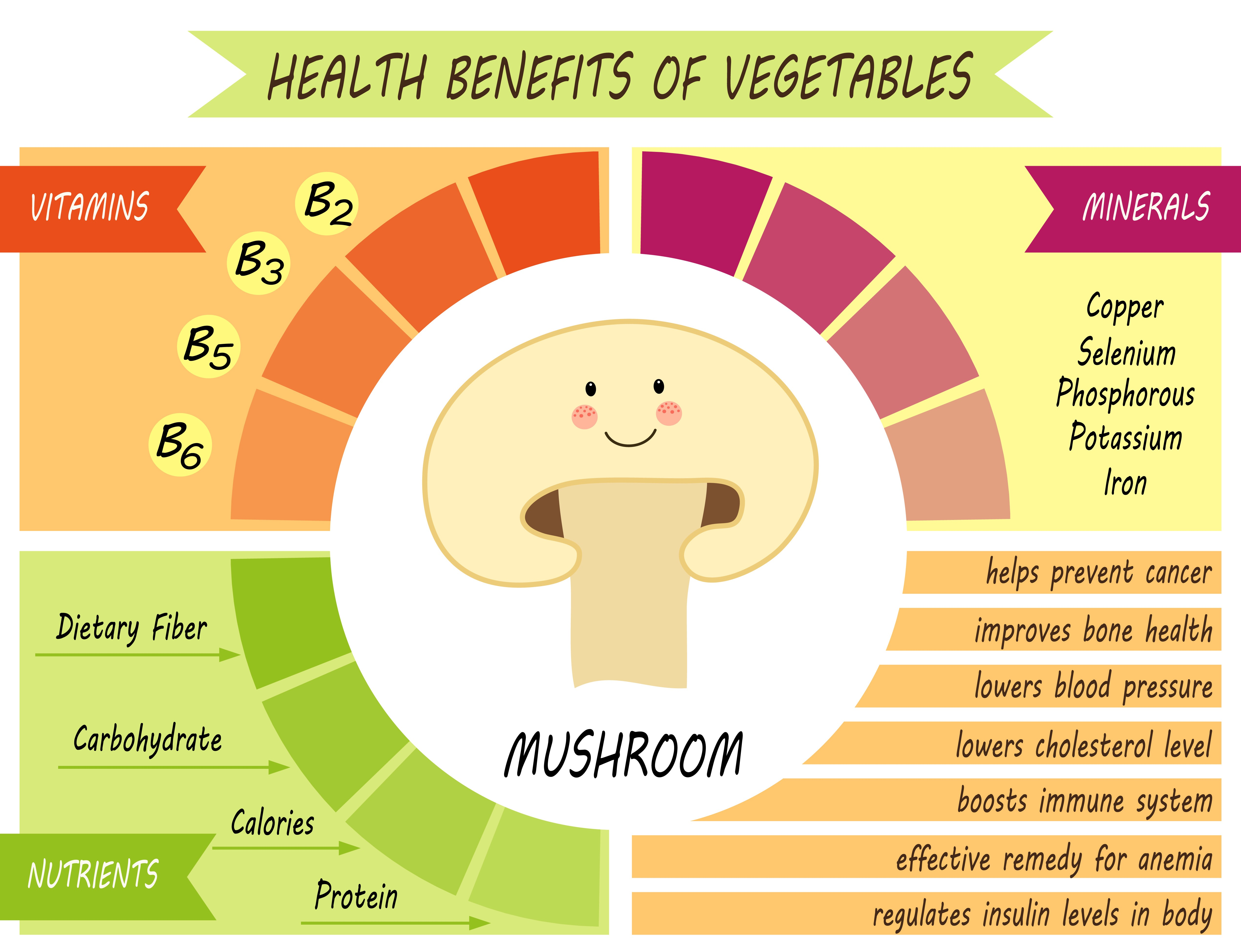 Health Benefits Of Mushrooms Ihearts143quotes